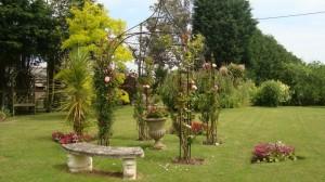 Barn garden 9_800x450